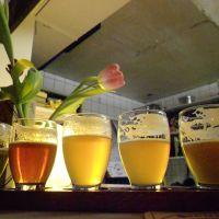 Sunday at the Brouwerij 't IJ - Sonntag in der Brouwerij 't IJ